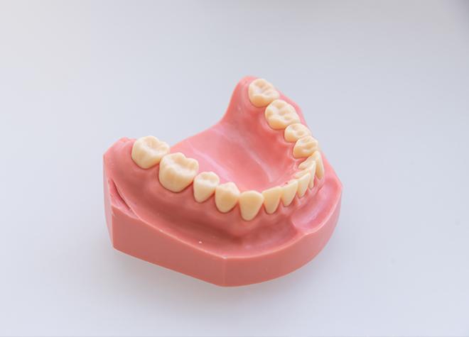 お子さまの虫歯予防に力を入れています