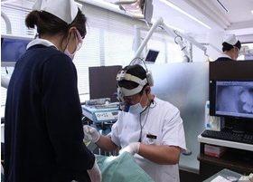 口腔外科医ならではの観点から、抜歯の施術を行っております。