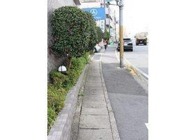 この道を進むと左に当院がございます。