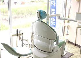 診療スペースは、自然に囲まれており、リラックスして頂けること間違いなしです。