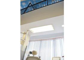 天井は吹き抜けになっており、開放感のある空間になっています。