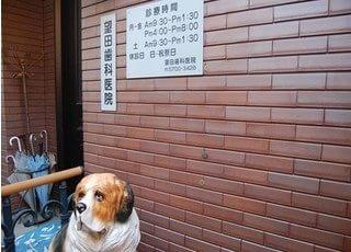 望田歯科医院
