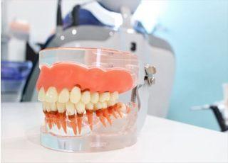 やすもと歯科医院_入れ歯・義歯4