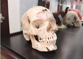 医療法人社団 緑森会 おくもり歯科医院_お口全体を通して患者さまに健康になっていただくために