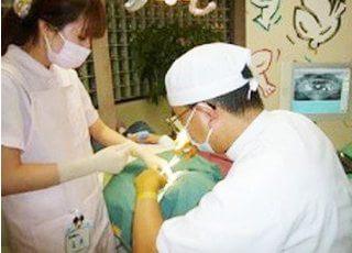 診療風景です。一般歯科からインプラント治療、小児歯科、歯周病治療まで対応します。