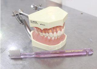 純歯科医院_予防歯科2