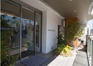 入り口には観葉植物等を設置しております。