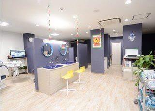 診察室は広々とした空間で、中央にはブラッシングができるスペースもご用意しています。