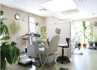 診療室は、白を基調とした空間です。観葉植物によるリラックス効果も得られます。