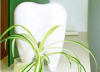 善福寺歯科クリニック_ホワイトニング2