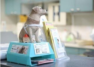 当院では、盲導犬への助成金活動も行っております。