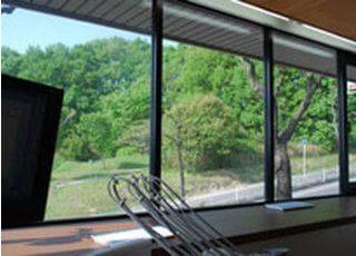 診療台から見える風景です。リラックスできると患者様に喜ばれています。