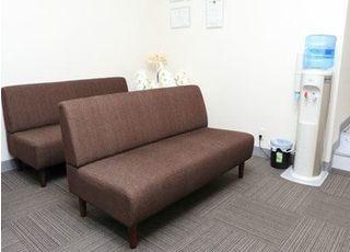 待合室は明るく落ち着いた雰囲気です。ゆったりとお座りになってお待ちください。