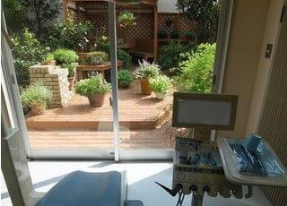 診療室から中庭を見ることが出来ます。