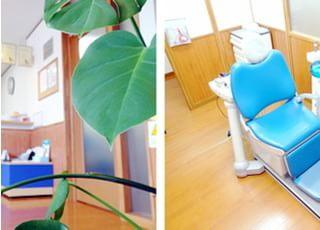 さとう歯科医院地域密着型の医療1