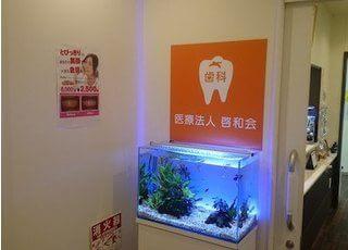 水槽があり、癒される空間になっています。
