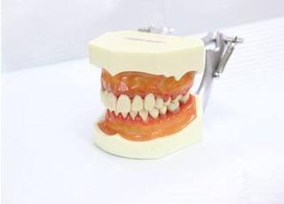 大塚歯科医院4