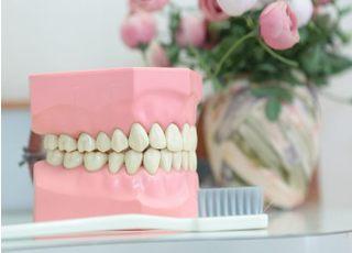 ア歯科横田クリニック_入れ歯・義歯3