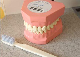 笑顔おとな・こどもデンタルクリニック_予防歯科3