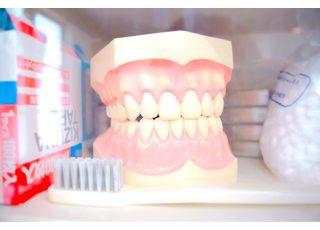 秀歯科医院_◇当院四つの治療方針◇