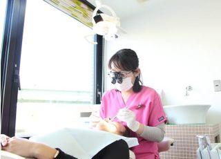 歯の花クリニック(自由診療のみ)_ホワイトニング2