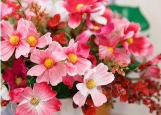 院内には可愛らしい花を飾っています。