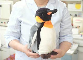 ペンギン歯科_先生の専門性・人柄1