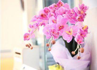 院内に飾ってあるお花です。