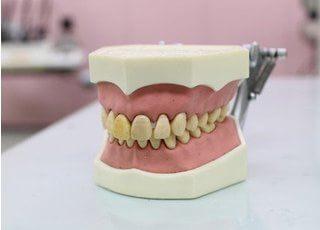 美濃歯科医院_美濃歯科医院のポリシー
