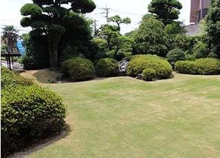 広々とした緑いっぱいのお庭があります。