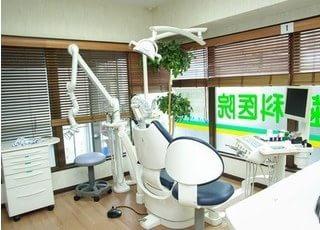 診療室です。観葉植物を飾り、リラックスできる空間作りを心掛けています。