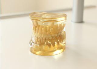 井上歯科医院_小児歯科3