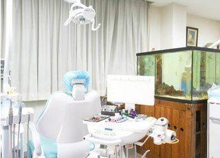 診療室には患者様がリラックスできるように水槽を設置しています。