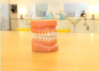 ウイング栗東矯正歯科クリニック_目立たない矯正治療2