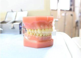 伊藤歯科医院_入れ歯・義歯3