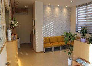 待合室です。植物を置くなど、患者様にリラックスして頂ける環境づくりを心がけています。