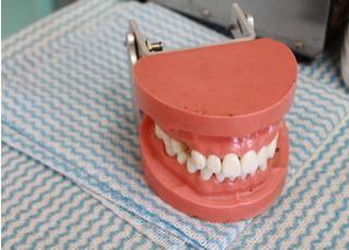 若葉歯科クリニック_健康で美しい歯を目指す患者さんに多彩な診療内容があります