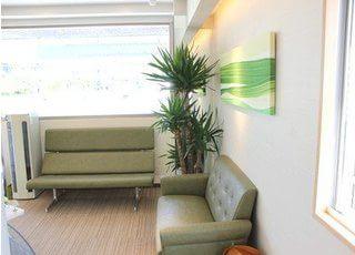 待合室です。落ち着いた空間ですので、診療をお待ちの間おくつろぎいただけます。