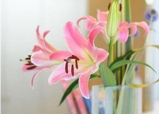 院内には花を飾り、リラックスしていただける空間づくりを心がけています。