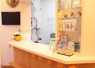 くるみ歯科(熊本市中央区)_入れ歯・義歯3