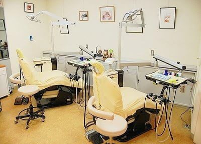 診療室です。アットホームな空間です。