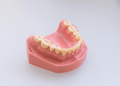 アベニューデンタルクリニック 小児歯科