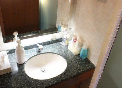 パウダー室です。お手洗い後はこちらをご利用ください。