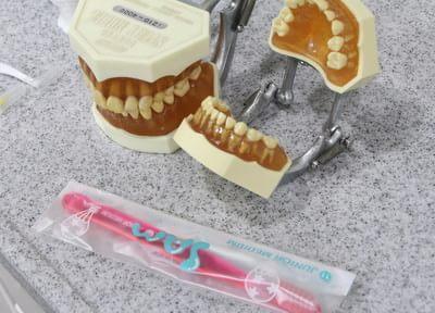 歯科衛生士が染め出し液を使いながら、ブラッシングの弱点をお伝えします