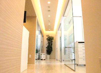 院内の廊下です。
