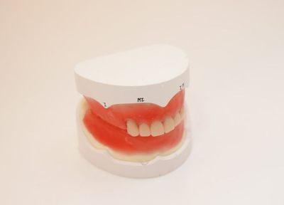 Q.入れ歯治療では、何を重視していますか?