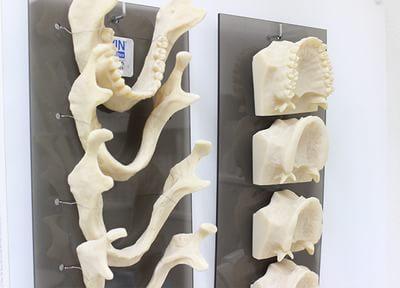 ライオン歯科_特徴2