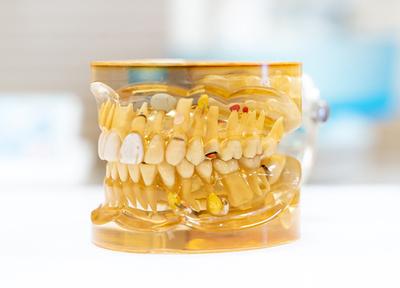 チームで行う歯科治療、矯正の先生や歯科口腔外科の先生もいらっしゃいます