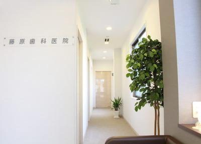 藤原歯科医院