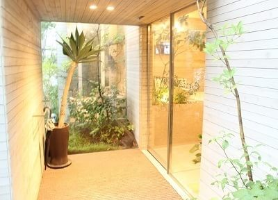 入り口には緑溢れる観葉植物を設置しております。